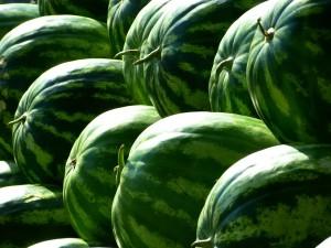 melons-197025_1280 pixabay